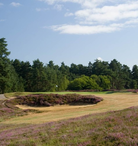The 10th at Swinley Forest